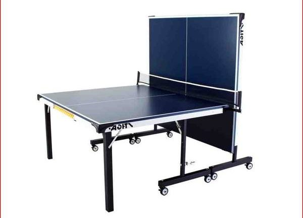avis go sport table de ping pong  table de ping pong en